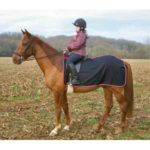 Waterproof Exercise sheet made by Nytack Equestrian-500×500